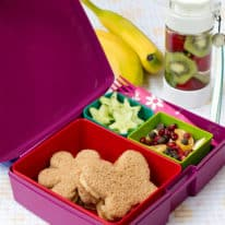 How To Make A Butterfly Bento Box