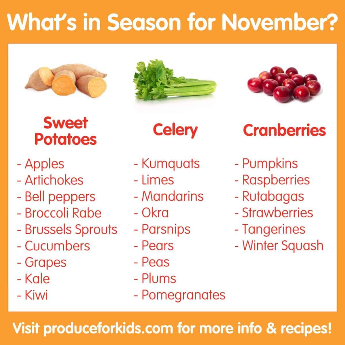 What's in Season for November?