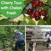 Cherry Tour with Chelan Fresh