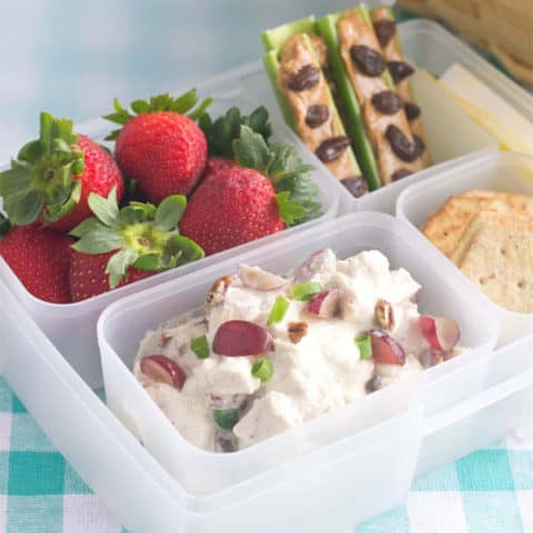 Easy Picnic Bento Box