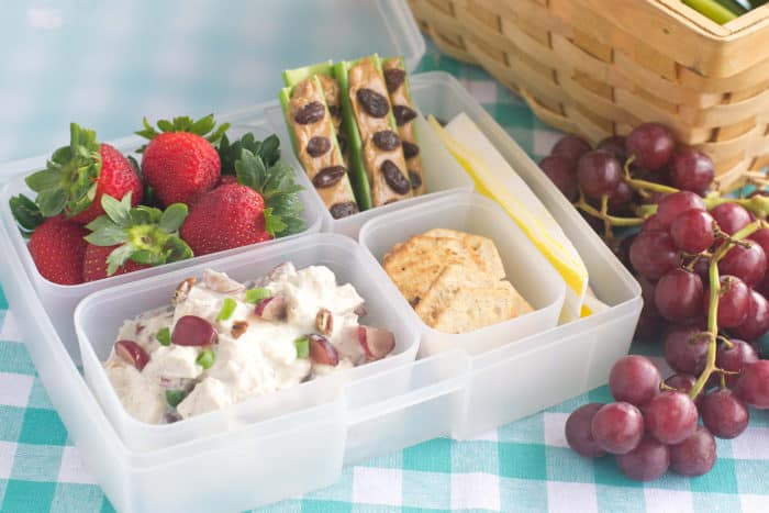 bento box with chicken salad, strawberries, ants on a log and crackers
