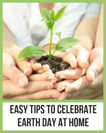 Easy Tips to Celebrate Earth Day At Home