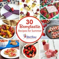 30 Berrytastic Recipes for Summer