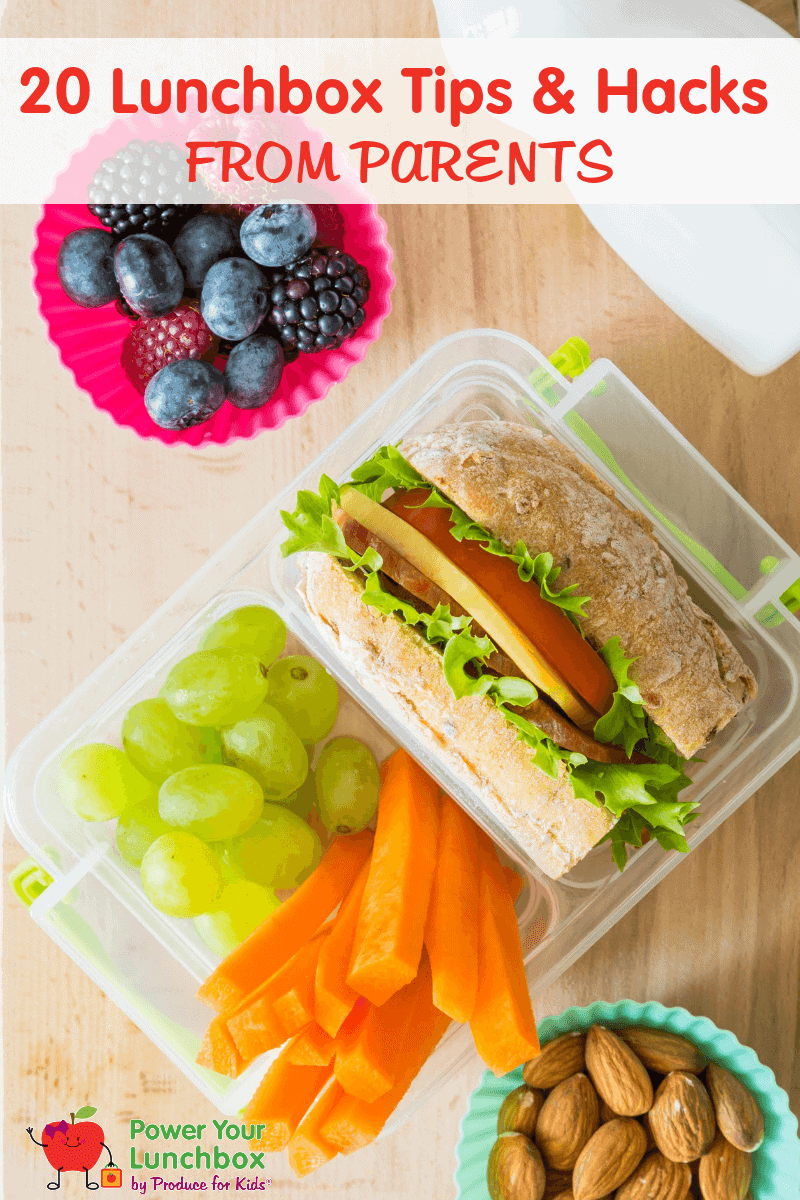 Overhead shot of packed lunchbox with sandwich, carrots, grapes, berries and almonds