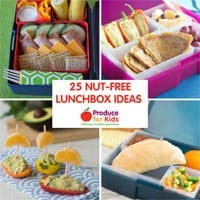 25+ Nut Free Lunchbox Ideas