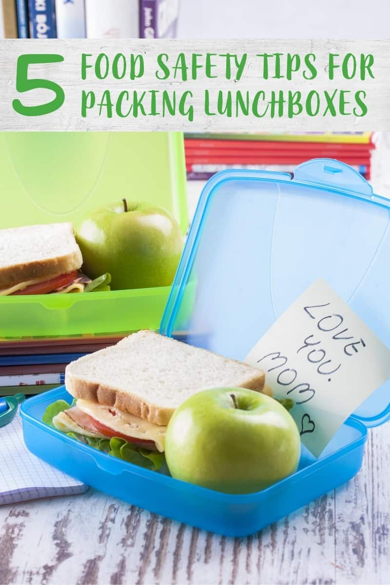 Open lunchbox with sandwich and apple