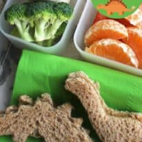 dinosaur lunch pin