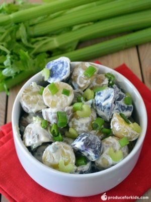 Red, White & Blue Potato Salad - Whether you're celebrating Memorial Day, the 4th of July or just looking for an easy and tasty dish for a cookout, picnic or potluck, this potato salad is for you! We gave regular potato salad a patriotic spin by using red, white and blue (purple) potatoes and gave it a healthier spin by using Greek yogurt instead of mayo.