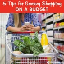 5 Tips for Grocery Shopping on a Budget