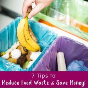 7 Tips to Reduce Food Waste and Save Money
