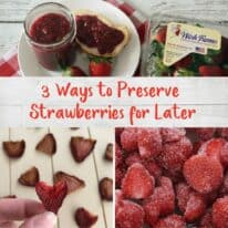 3 Ways to Preserve Strawberries for Later + A Visit to Wish Farms