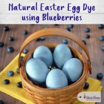 How to Naturally Dye Easter Eggs with Blueberries