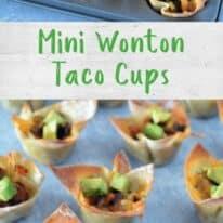 Mini Wonton Cups