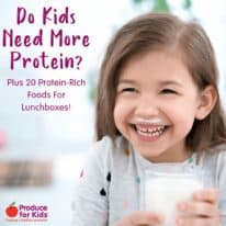 Do Kids Need More Protein? (Plus 20 Protein-Rich Foods For Lunchboxes!)