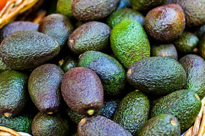 avocados in different shades of green