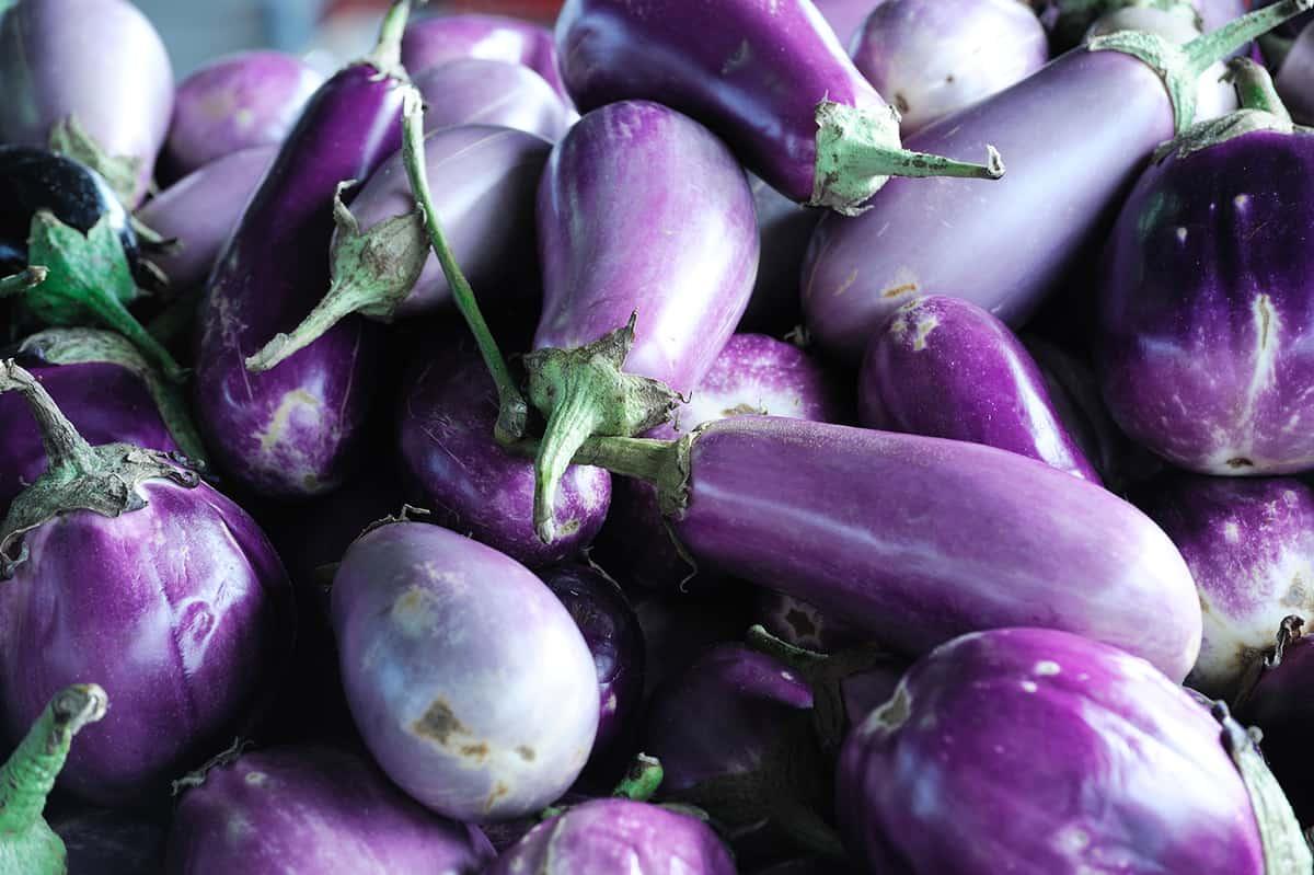 piles of fresh eggplant