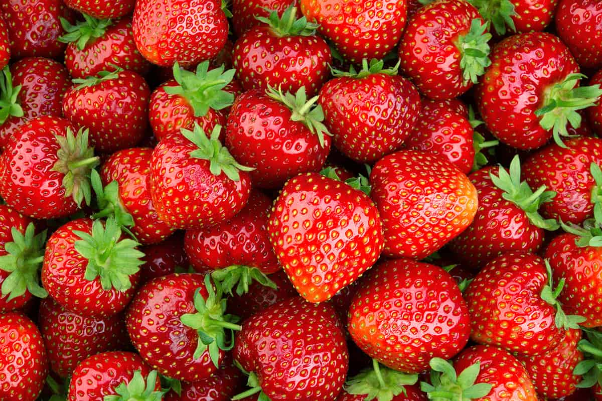 Lots of strawberries as a background