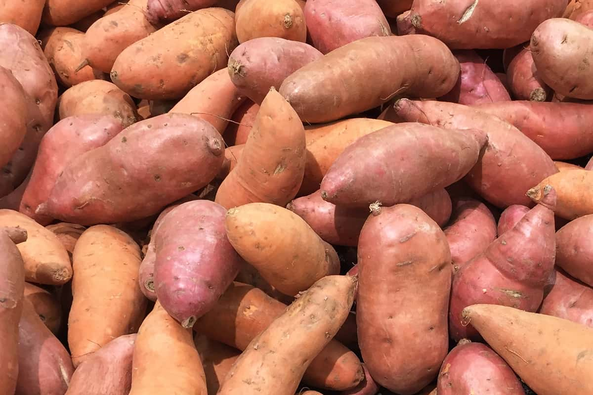 Box of sweet potatoes