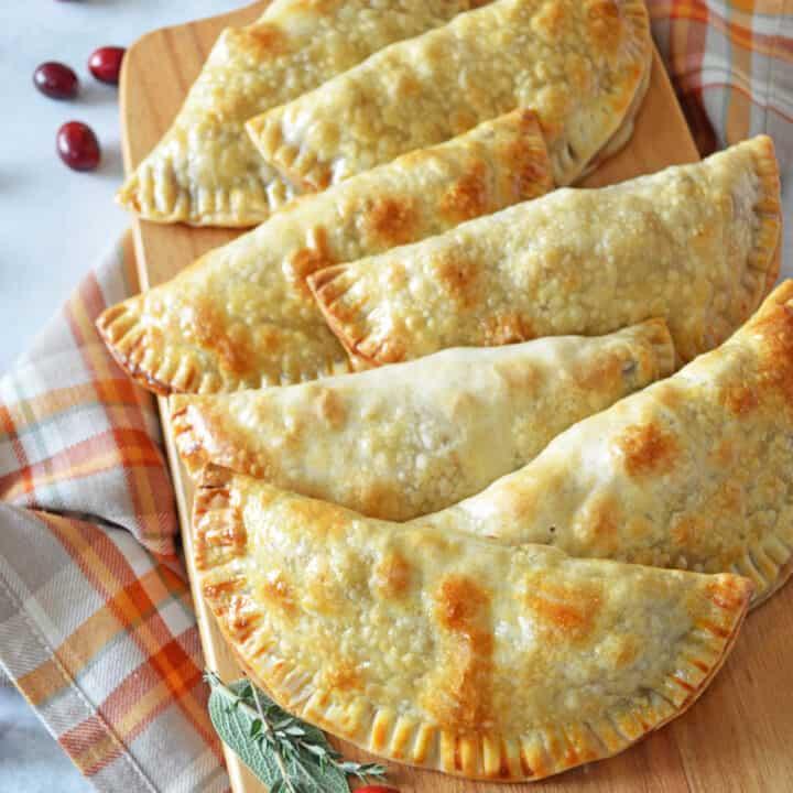 Turkey Cranberry Empanadas